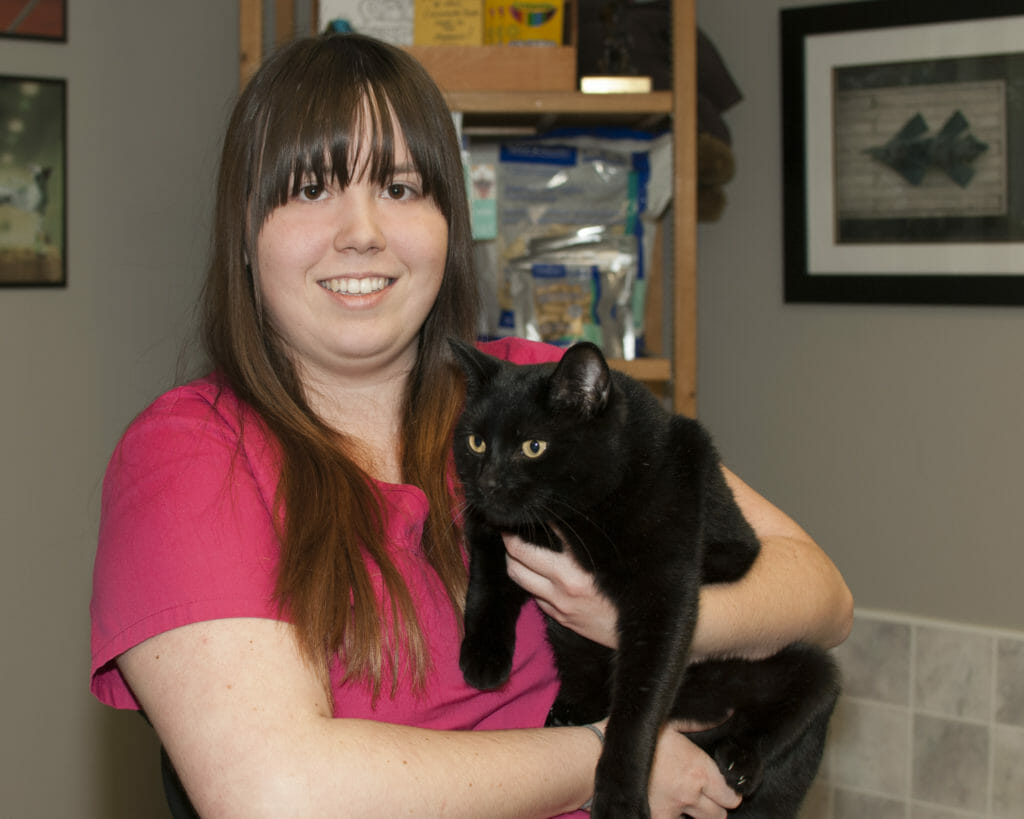 Animal care attendant holding a black cat