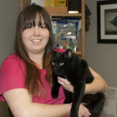 Animal care attendant holding a black cat