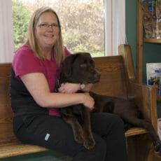 Client care representative holding a large brown dog
